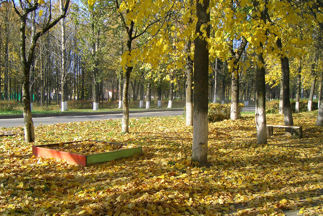 леса поля и города проплывают мимо знакомые